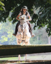 Looking for the Best Equestrian Centre for Riding Holidays in Ireland?